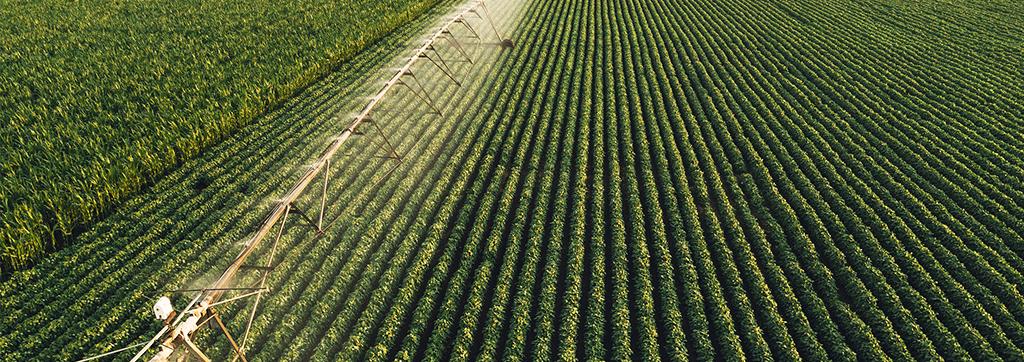 AGRICOLTURA-VALVOLE